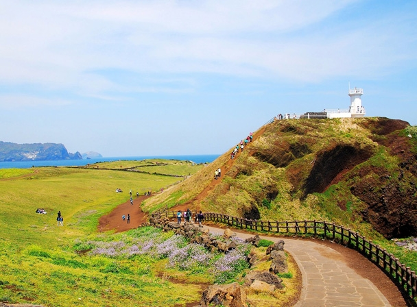 6 Days 5 Nights Seoul Jeju